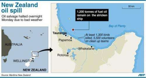 Graphic showing the latest situation in New Zealand's Bay of Plenty