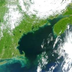 Satellite image of post-Irene Gulf of Maine shows high levels of river discharge