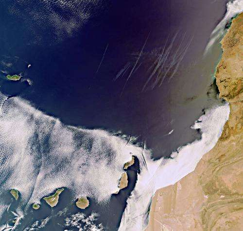 Earth from Space: Volcanic Canaries