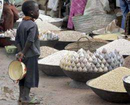 A boy looks at corn, rice and millet at the food market in Maradi, Niger in 2005