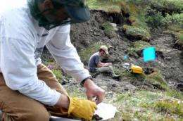 Abrupt permafrost thaw increases climate threat