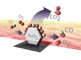 Accounting for scale in catalysis