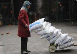 A Chinese worker delivers bags of rice at a warehouse in Hefei