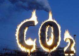 Activists burn a symbol of carbon dioxide in Berlin