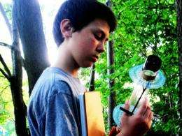 13 year old researcher finds tree inspired solar collection more efficient