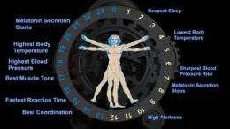'Alarm clock' gene explains wake-up function of biological clock