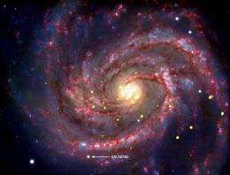 A Nasa pictue of a supernova within the galaxy M100
