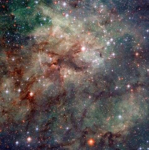 Arachnophobes beware: Hubble snaps close-up of the Tarantula