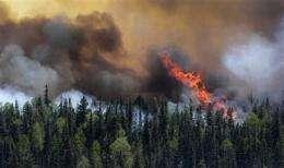Arizona blaze part of new era _ more big wildfires (AP)