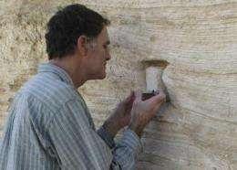 A seismograph for ancient earthquakes