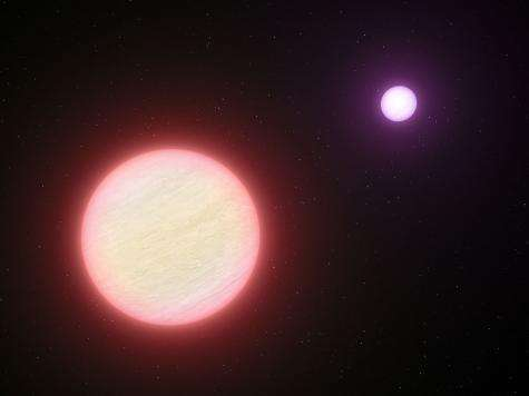 A very cool pair of brown dwarfs