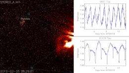 STEREO turns its steady gaze on variable stars