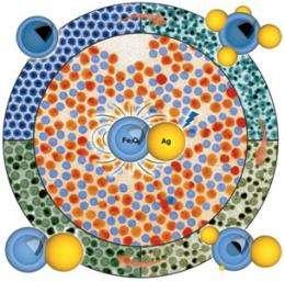 Bifunctional plasmonic / magnetic nanoparticles