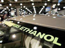 Critics say ethanol, made mainly from corn in the United States, has diverted too much grain from food to fuel