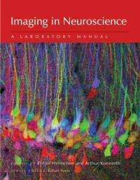 Cutting-edge imaging techniques for neuroscientists available in latest laboratory manual