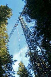 Era of canopy crane ending; certain research and education activities remain