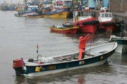 Fishermen prepare their boats in the port of Talcahuano, 500 km south of Santiago