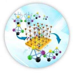 Flexible rack systems sort molecules
