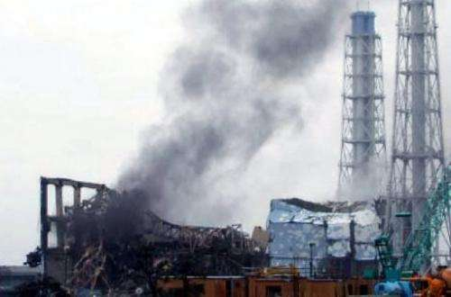 Fukushima Daiichi has spewed radioactive materials across eastern Japan since it was hit by the tsunami on March 11.