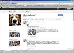 Google social net is about preserving leadership (AP)