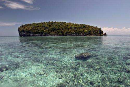 In 2010, Indonesia's Raja Ampat archipelago received a total of just 4,515 visitors