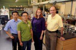Iowa State hybrid lab combines technologies to make biorenewable fuels and products