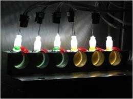 'Low tech' light in neutron beam illuminates photosynthesis in bacteria