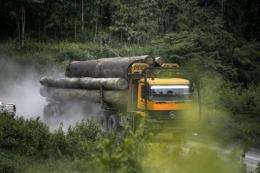 """Malaysia's government has unveiled plans for a""""green economy"""""""