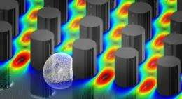 Microfluidics: Sizing up cells