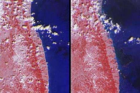 NASA images tsunami's effects on Northeastern Japan