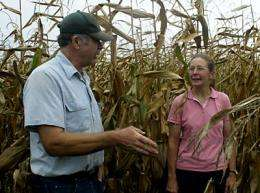 New Cornell organic corn available for sale