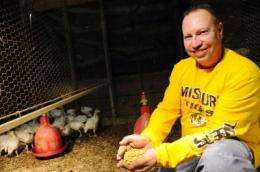 New turkey feed helps bird producers gobble up profits