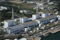 Nuclear will survive, because it has to