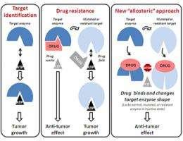 New way to target – and kill – proliferating tumors