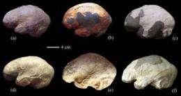 Peking man differing from modern humans in brain asymmetry