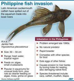 Philippine fish invasion
