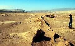 Plant remains link farming to landscape damage in Peru