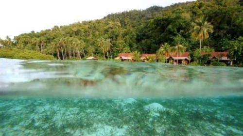 Raja Ampat archipelago: the last paradise on Earth  Duration: 00:59
