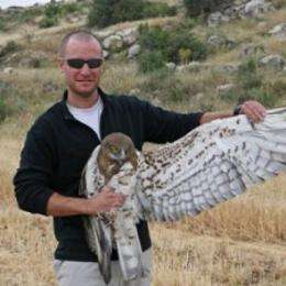 Raptor usurpers in neighboring habitats reshape the conventional wisdom