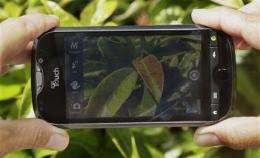 Review: Can a smartphone camera do it all? (AP)