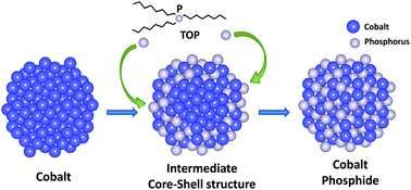 Scientists unveil transformations in cobalt