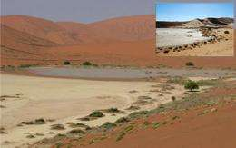 Something Odd Is Happening With Namibia's Weather