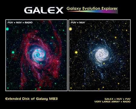 Stellar extremophiles