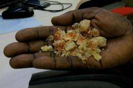 Sudan produces at least 80 percent of the world's gum arabic supply