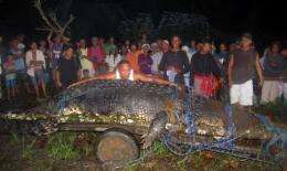 The 21-foot (6.4-metre) saltwater crocodile is believed to have killed two people