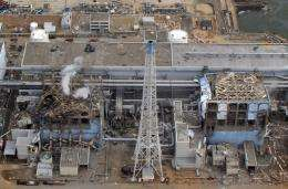 The Fukushima nuclear plant was destroyed following the March 11 earthquake and tsunami in northeast Japan