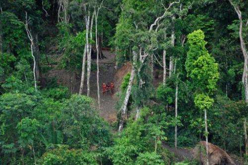 "There is pressure for the Brazilian defense ministry to step up efforts to protect its ""uncontacted"" tribes"