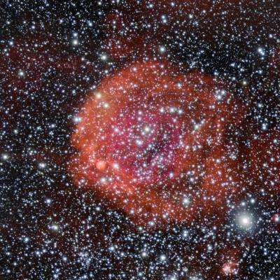 The rose-red glow of star formation
