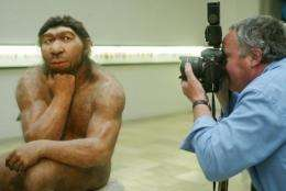 The squat, low-browed Neanderthals lived in parts of Europe, Central Asia and the Middle East