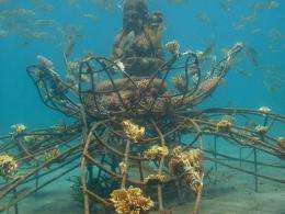 "Today there are around sixty of these ""cages"" in Pemuteran bay"